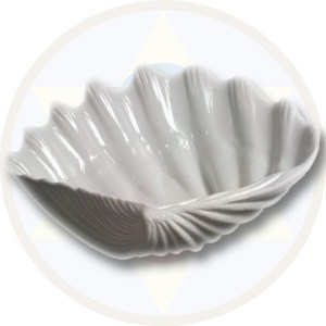 Finger-Clam-Large