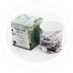 Forest Succulent 1 Porcelain Candle Black Cinnamon fragrance boxed porcelain candle - AllisOne
